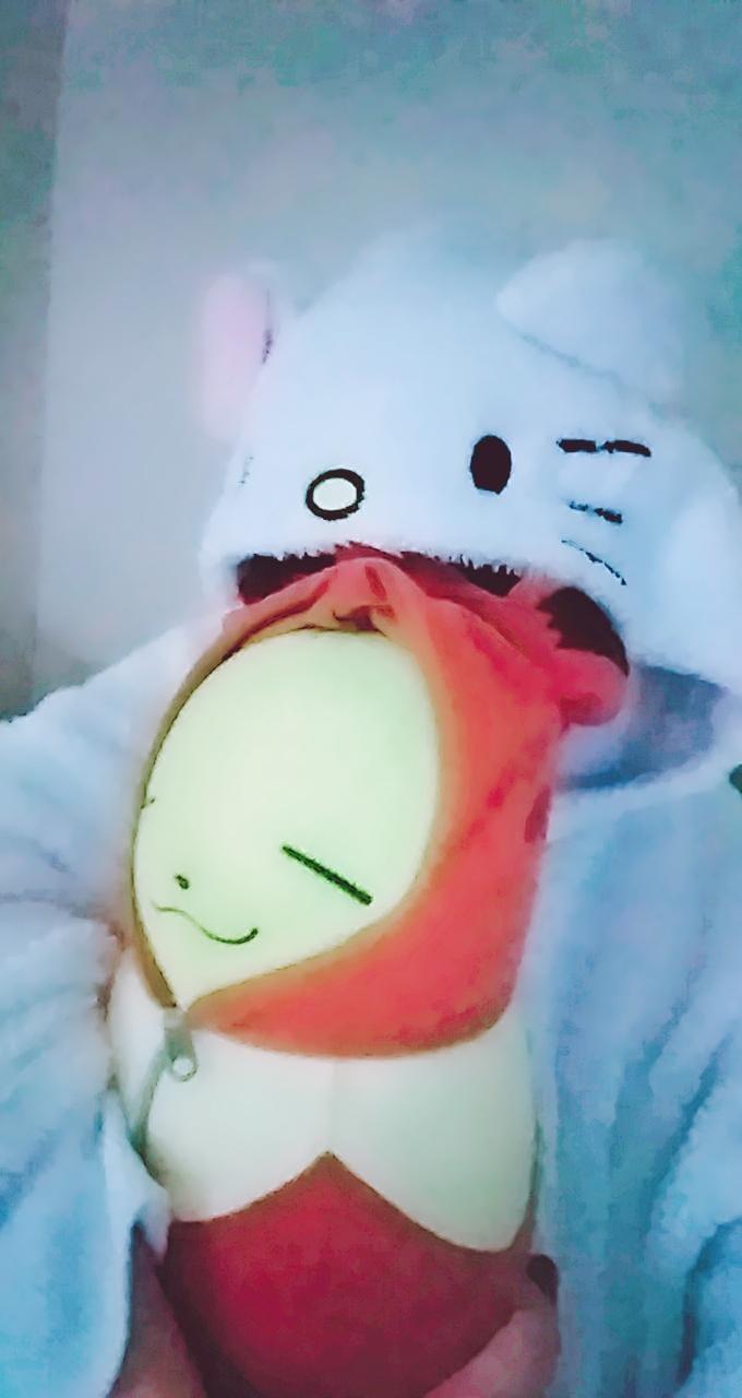 「ごめんなさい」12/06(12/06) 08:26 | たまきちゃんの写メ・風俗動画