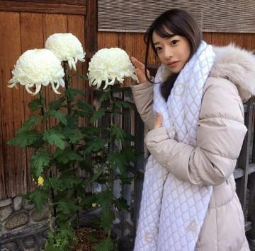 「カバンの中?」12/06(12/06) 17:45   白浜めいの写メ・風俗動画