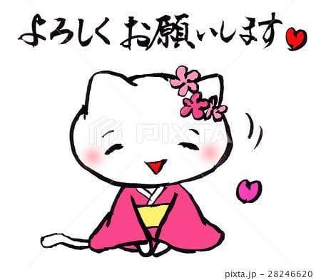 「こんにちは」12/07(12/07) 12:57 | 奈緒の写メ・風俗動画