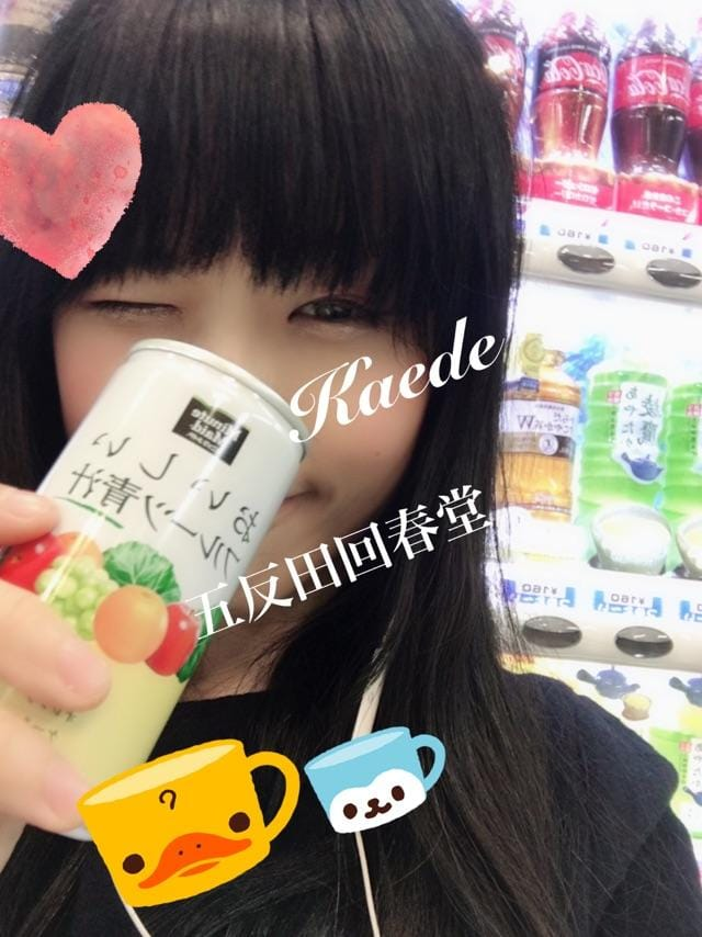 「抹茶のようでそうでない飲み物」12/09(12/09) 06:51 | 楓-かえで-の写メ・風俗動画