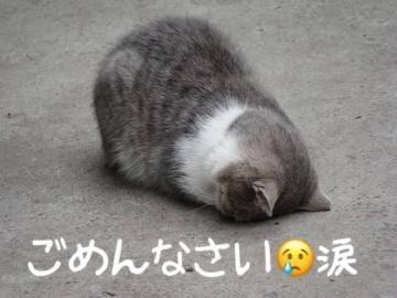 「」12/09(12/09) 18:36 | かのんの写メ・風俗動画
