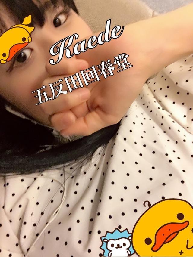 「〇ートテック」12/13(12/13) 04:56 | 楓-かえで-の写メ・風俗動画