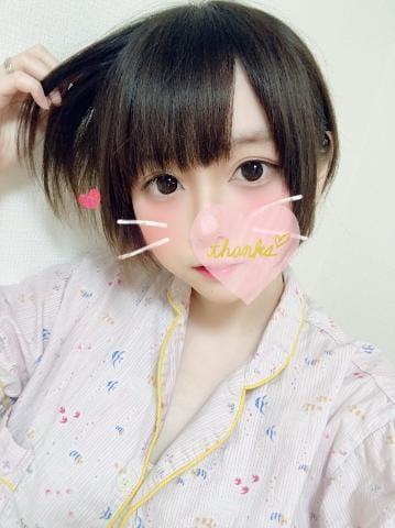 「先日のお礼」12/13(12/13) 21:01   アリスの写メ・風俗動画
