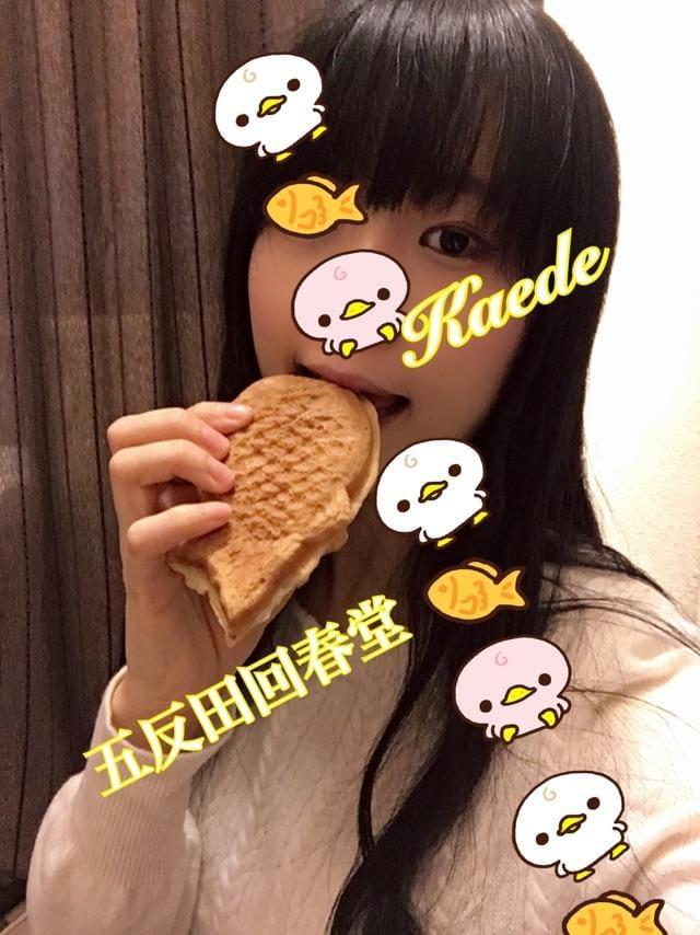 「ぱくぱくぴちぴち」12/14(12/14) 05:32 | 楓-かえで-の写メ・風俗動画