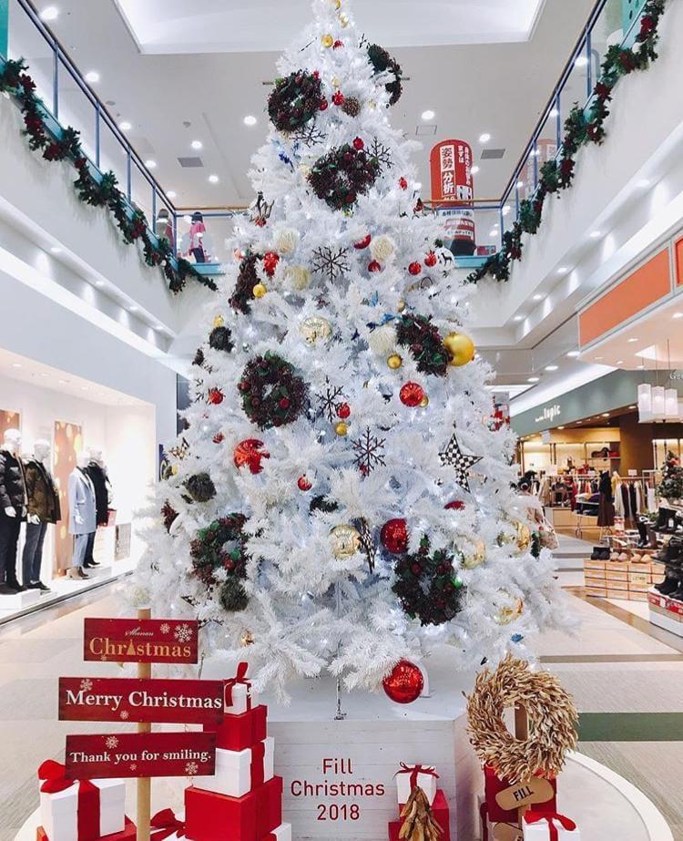 「クリスマスのご予定は?」12/15(12/15) 11:27 | 滝沢かおりの写メ・風俗動画