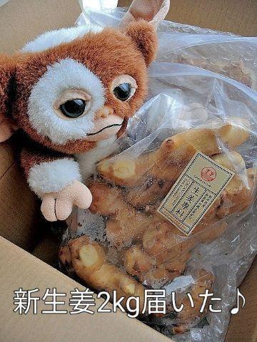 「新生姜2kg届いた♪」12/15(12/15) 21:18 | はるかの写メ・風俗動画