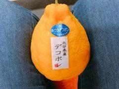 「柑橘ちゃん?」12/19(12/19) 09:21   ゆうの写メ・風俗動画