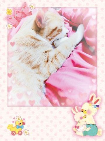 「昨日のお礼★」01/07(01/07) 12:30 | かけるの写メ・風俗動画