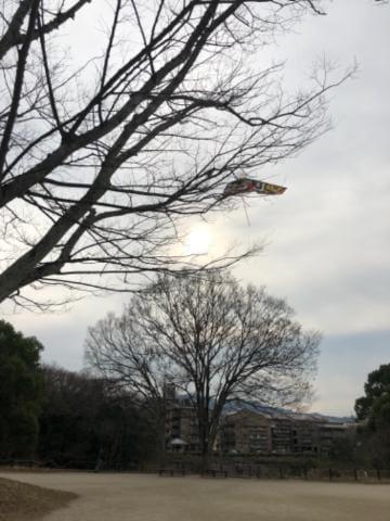 「タコが絡まってた」01/11(01/11) 22:10 | アカネの写メ・風俗動画