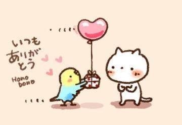 「ありがとうございます!」01/15(01/15) 11:27   松岡 美杏の写メ・風俗動画