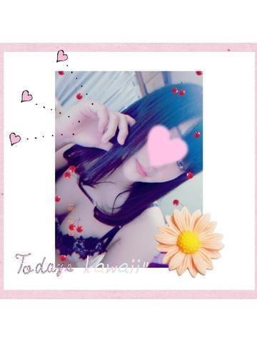 「こんばんはU。・ェ・。Uノ」01/22(01/22) 22:57 | 吉田 ここなの写メ・風俗動画