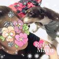 まゆ (Mayu)|出張メンズエステ RELAX