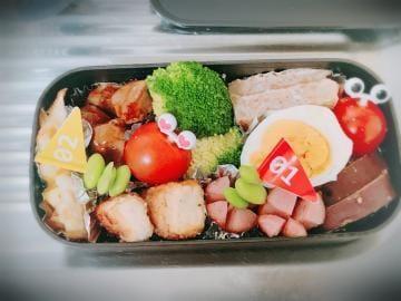 「今日のお弁当♪」01/24(01/24) 14:12   桃叶あいか【新人】の写メ・風俗動画