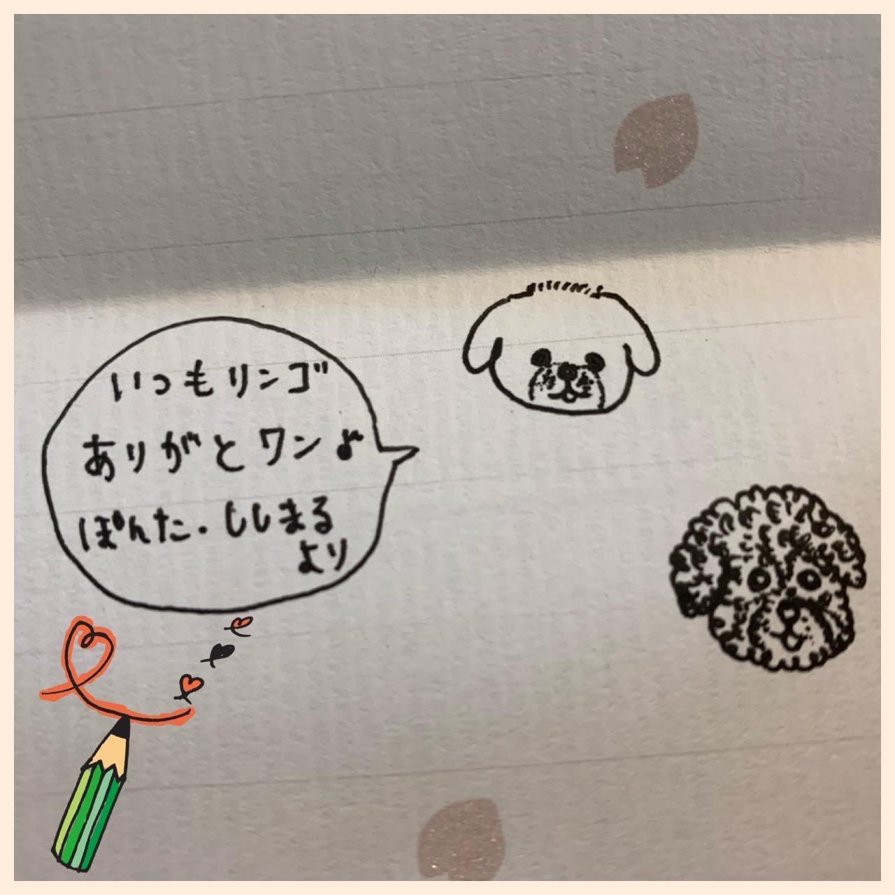 「本命チョコ」02/12(02/12) 23:05 | ななの写メ・風俗動画