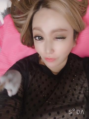 「レディス?ディです!」02/19(02/19) 09:26   りなの写メ・風俗動画