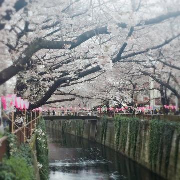 「今日から休み♪」04/04(04/04) 11:54 | 堀内優香の写メ・風俗動画