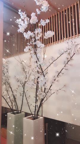 「銀座Date♥︎︎ お写真いっぱい!」03/12(03/12) 02:36 | ゆずなの写メ・風俗動画