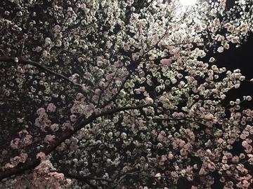 「楽しかった〜」04/10(04/10) 12:32 | みかの写メ・風俗動画