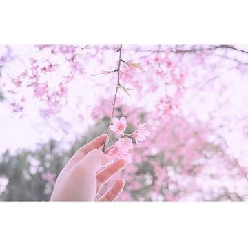 「こんにちわ♪」03/20(03/20) 14:08 | まりの写メ・風俗動画