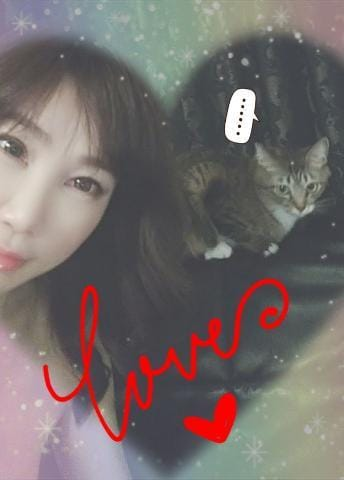 「【猫動画】『激しいな!』」05/20(05/20) 18:09 | しずか の写メ・風俗動画