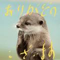 ひろみ 奥様鉄道69 神奈川店