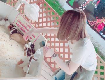 「こんにちわ」06/27(06/27) 16:48 | くみ【脳天直撃の一輪の花☆】の写メ・風俗動画