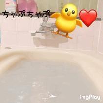 「ちゃぷちゃぷ」07/17(07/17) 17:45 | あかりの写メ・風俗動画