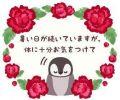 星宮鳴海|こあくまな熟女たち福山店(KOAKUMAグループ)