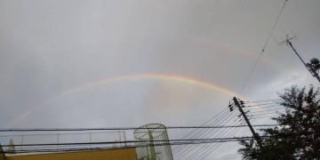 「虹〜??」08/27(08/27) 23:34   藍田 りのの写メ・風俗動画