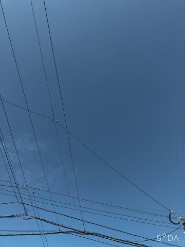 「毎日は無理?」10/11(10/11) 10:26 | しのぶの写メ・風俗動画