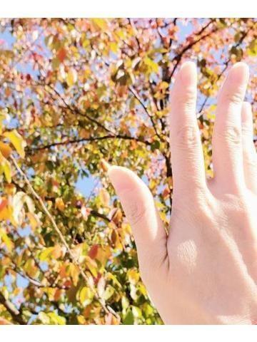 「[紅葉狩りの思い出♪]:フォトギャラリー」11/07(11/07) 13:53 | まゆり『旦那に内緒エロ美人来た』の写メ・風俗動画