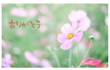 「??」11/16(11/16) 10:20 | 青空 翼の写メ・風俗動画