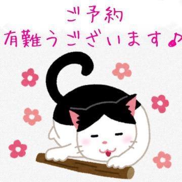 「本日も22時まで出勤しています☆★」11/18(11/18) 13:25 | りょうこの写メ・風俗動画
