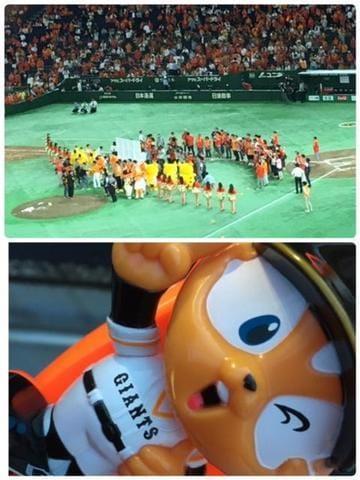 「野球観戦♪」07/11(07/11) 16:27 | 麗香(れいか)の写メ・風俗動画