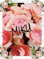 ミク|愛人バンク