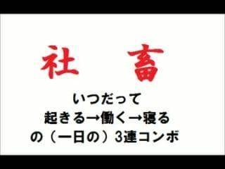 愛菜(あいな)