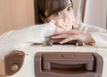 「行ってきます?」01/24(01/24) 15:44 | 櫻子の写メ・風俗動画