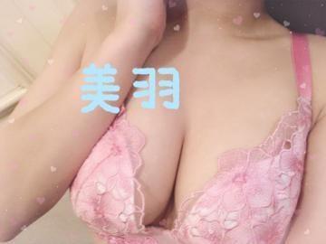 「出勤?」02/14(02/14) 20:33   【S】美羽/みうの写メ・風俗動画