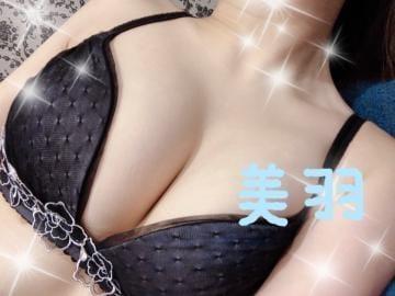 「出勤しました?」02/15(02/15) 20:52   【S】美羽/みうの写メ・風俗動画