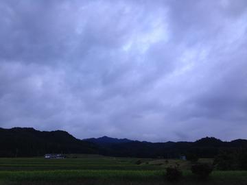 美月(ミヅキ)
