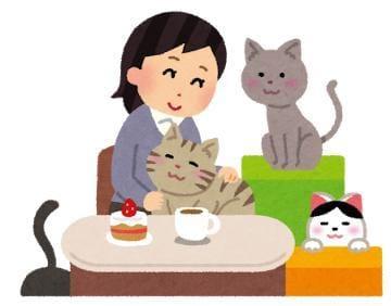 「猫の日!!」02/22(02/22) 02:50 | パインの写メ・風俗動画