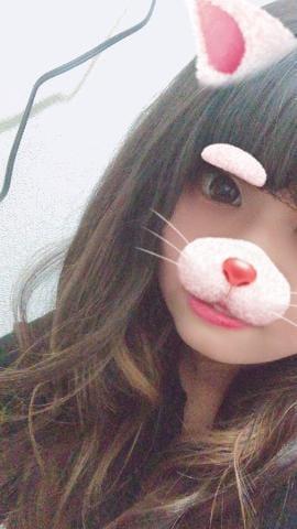 「こんばんわ!!!」03/02(03/02) 23:12 | ひかりの写メ・風俗動画