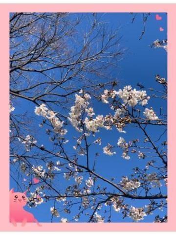 「おすそわけ」03/22(03/22) 12:02 | やよいの写メ・風俗動画