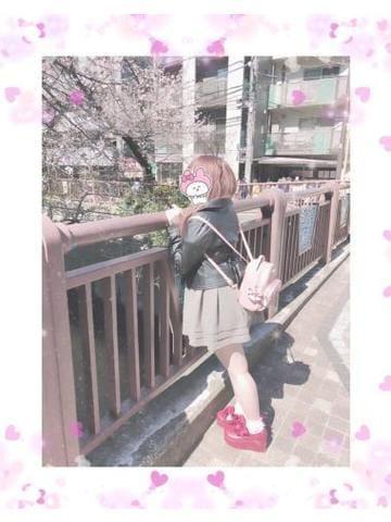 「? お花見?? ?」03/26(03/26) 19:40 | めぐの写メ・風俗動画