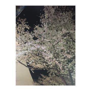 「おはようございます」03/30(03/30) 07:52 | みさの写メ・風俗動画