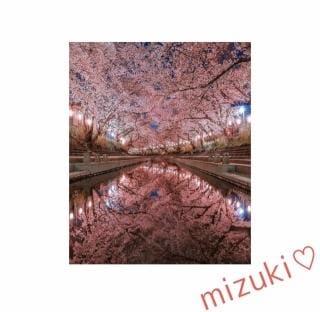 「まったり♡」03/31(03/31) 19:39   白峰 ミズキの写メ・風俗動画