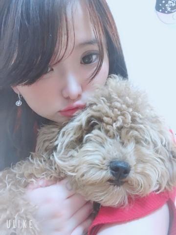 「こんばんわ」03/31(03/31) 22:46 | さきの写メ・風俗動画