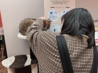 「出勤しました!!」04/01(04/01) 15:23 | かおるの写メ・風俗動画