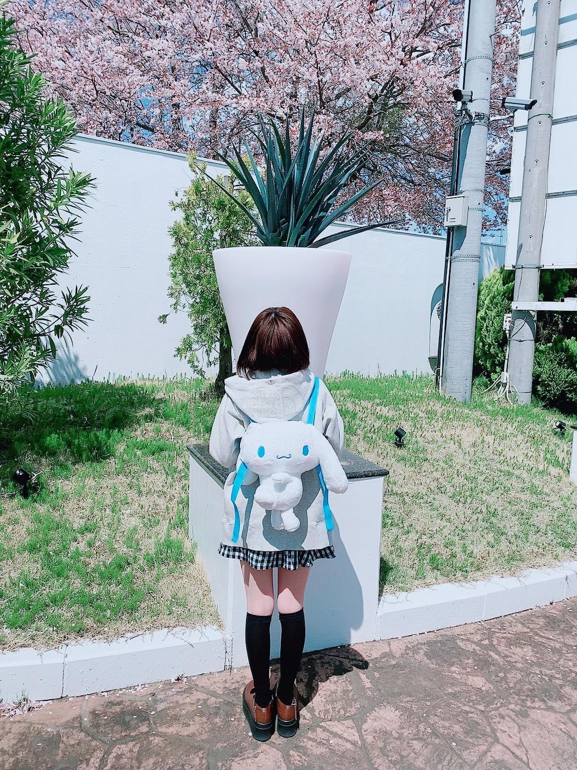 「シナモンのリュック(っ´ω`c)」04/06(04/06) 15:30   すずちゃんの写メ・風俗動画