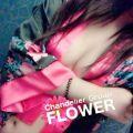 ひめか|Flower(フラワー)